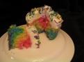 Rainbow design inside.